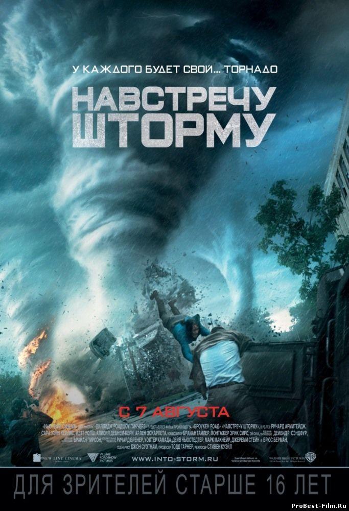 Навстречу шторму / Into the Storm